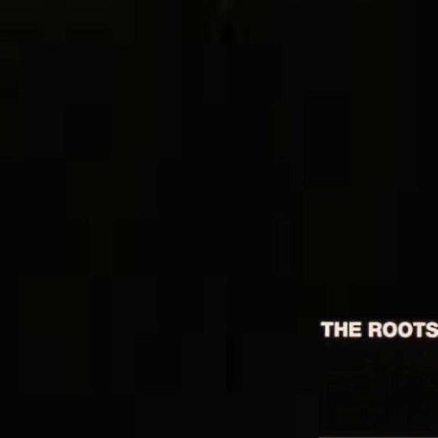 The Roots Organix Vinyl Record