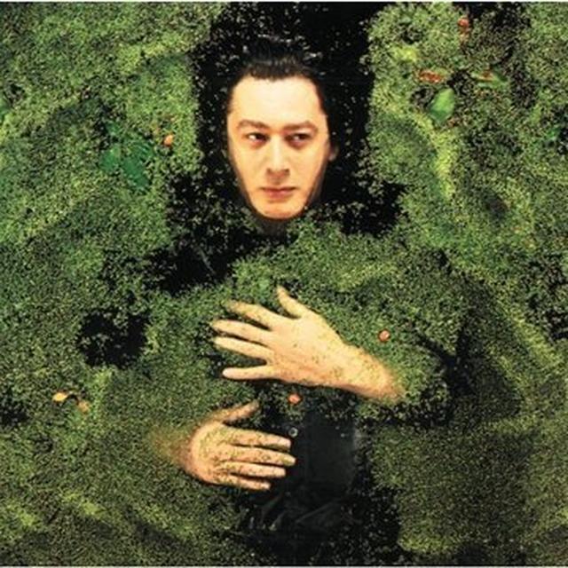 Alain Bashung FANTAISIE MILITAIRE Vinyl Record - 180 Gram Pressing