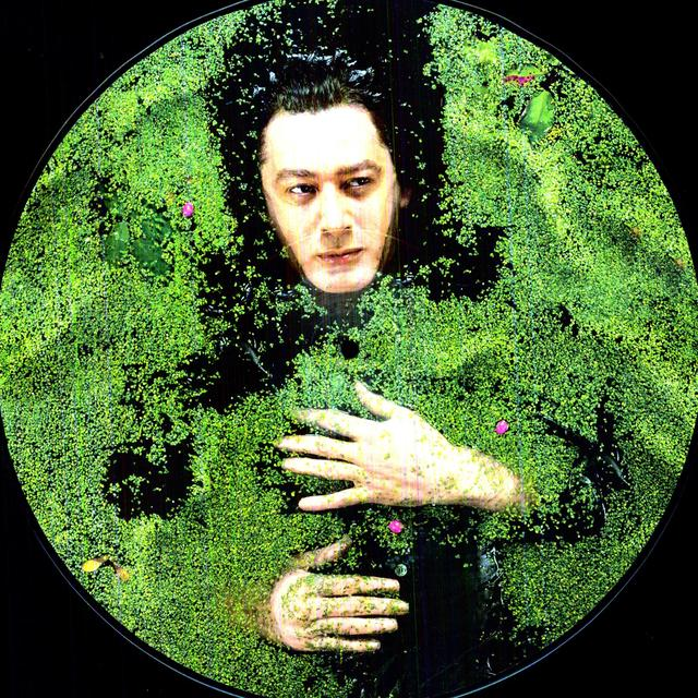 Alain Bashung FANTAISIE MILITAIRE Vinyl Record - Picture Disc