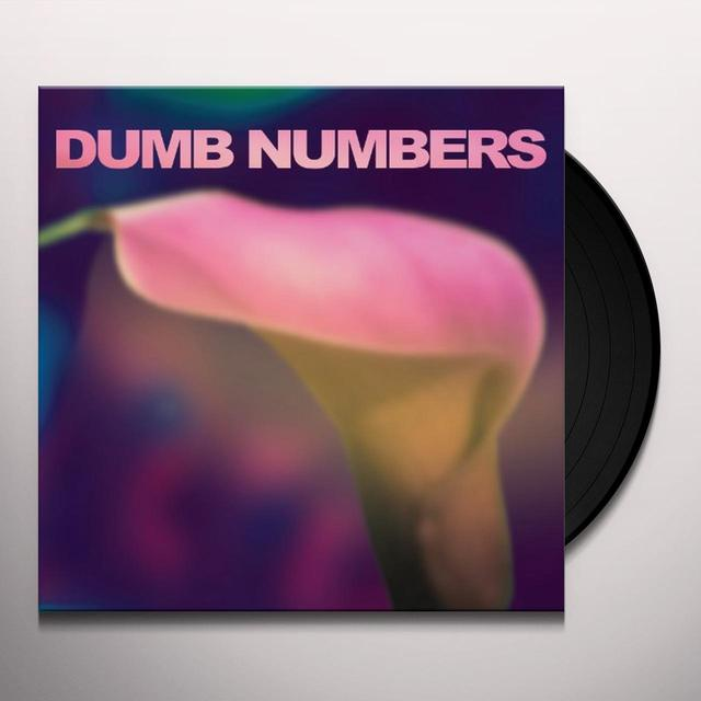 DUMB NUMBERS Vinyl Record