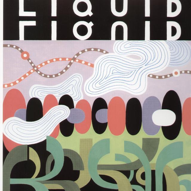 Liquid Liquid SLIP IN & OUT OF PHENOMENON Vinyl Record