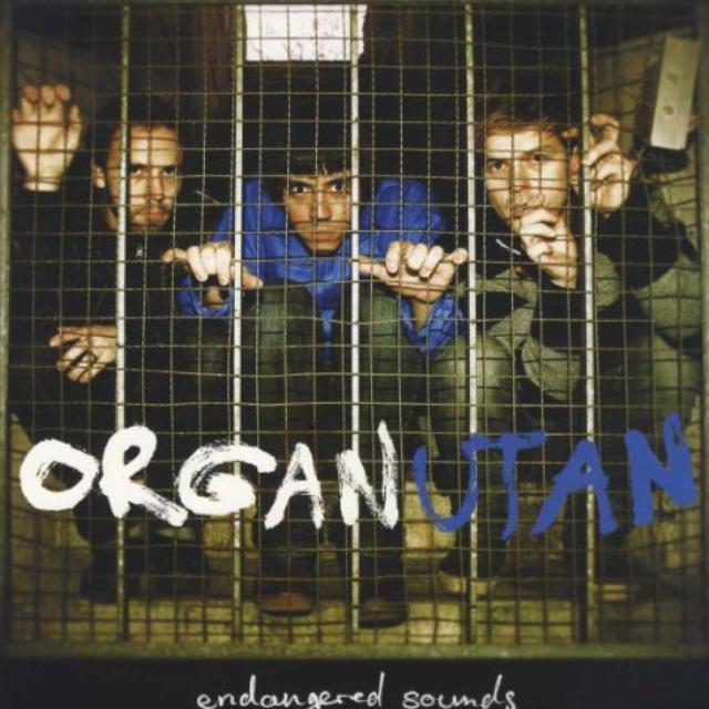 Organutan ENDANGERED SOUNDS Vinyl Record