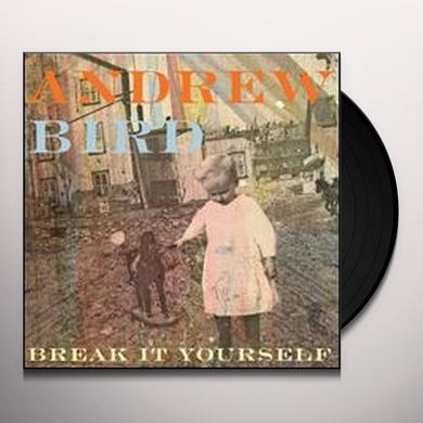 Andrew Bird BREAK IT YOURSELF Vinyl Record