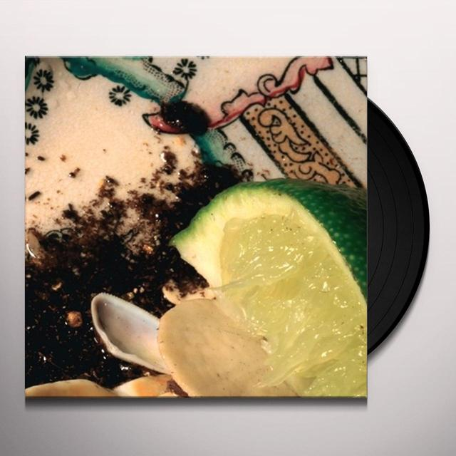 Donato Dozzy PLAYS BEE MASK Vinyl Record