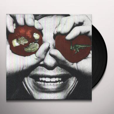 Terry Malts NOBODY REALIZES Vinyl Record