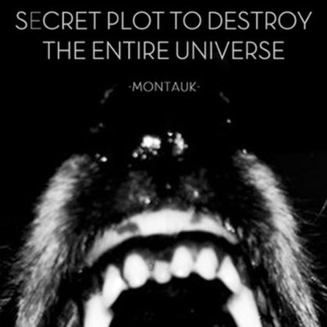 Secret Plot To Destroy The Entire Universe MONTAUK (EP) Vinyl Record
