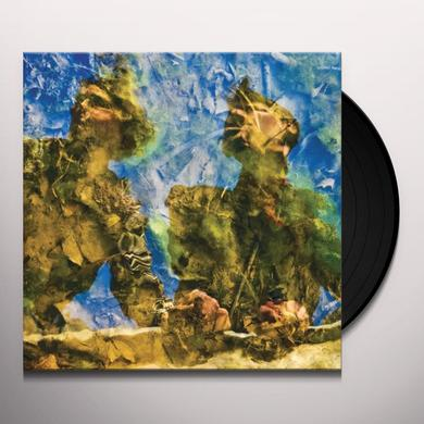 Horse'S Ha WATERDRAWN Vinyl Record