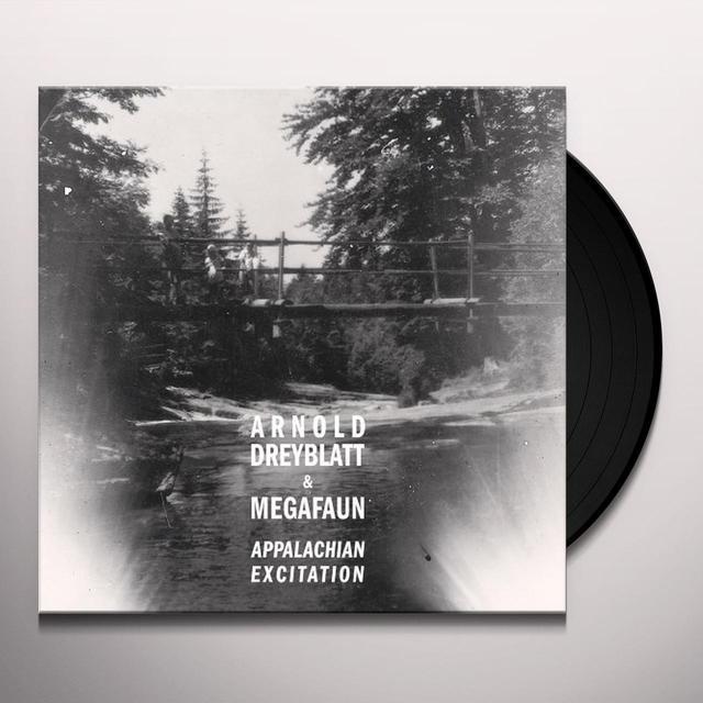 Arnold Dreyblatt & Megafaun APPALACHIAN EXCITATION Vinyl Record - Digital Download Included