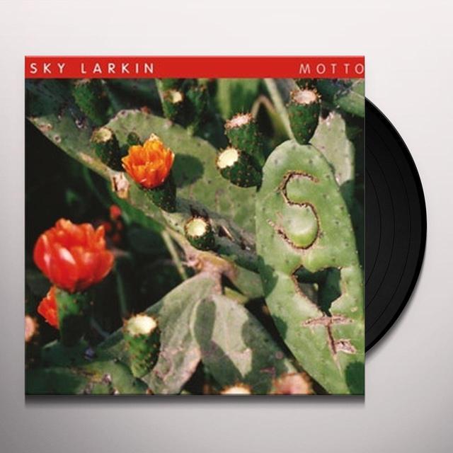Sky Larkin MOTTO Vinyl Record