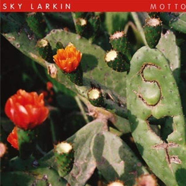 Sky Larkin MOTTO Vinyl Record - w/CD, 180 Gram Pressing