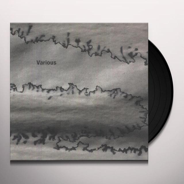 VARIOUS Vinyl Record