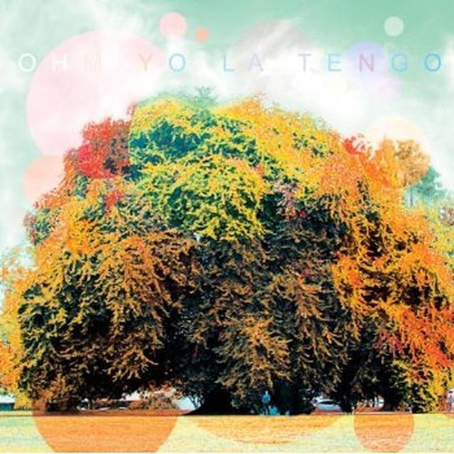 Yo La Tengo OHM Vinyl Record - Limited Edition