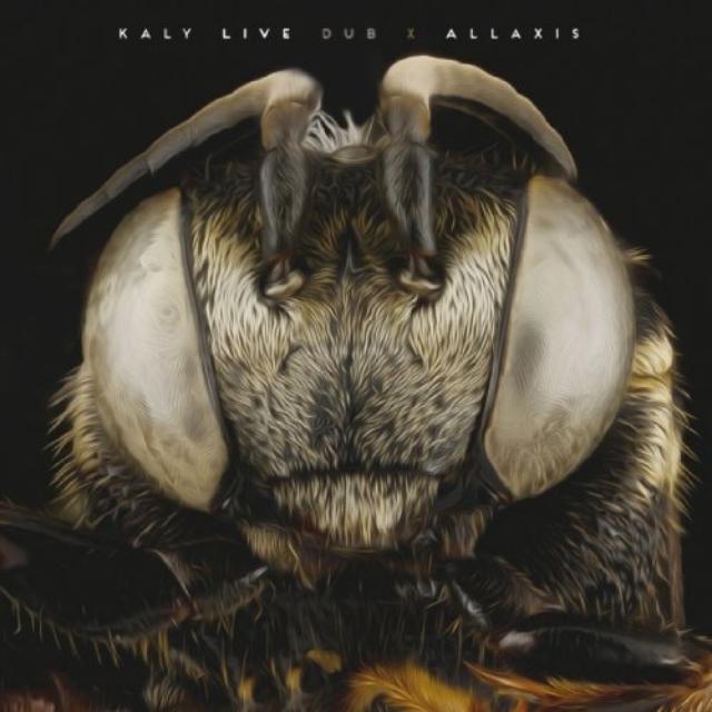 Kaly Live Dub