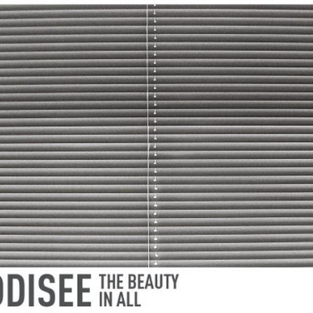 Oddisee BEAUTY IN ALL Vinyl Record