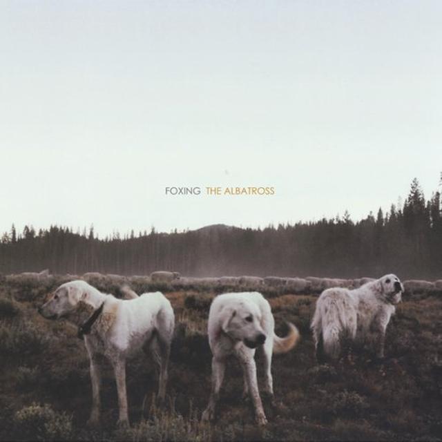 Foxing ALBATROSS (Vinyl)