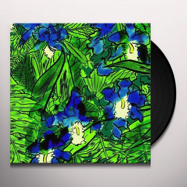 HIGGINS WATERPROOF BLACK MAGIC BAND Vinyl Record