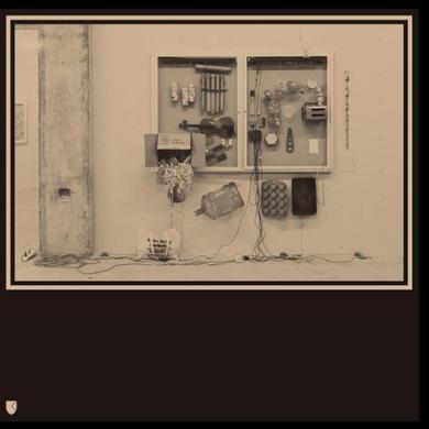 David Van / Ten Tieghem FITS & STARTS Vinyl Record