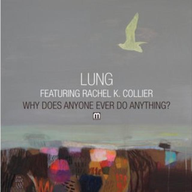 Lung WHY DOES ANYONE EVER DOVANYTHING Vinyl Record - Holland Release