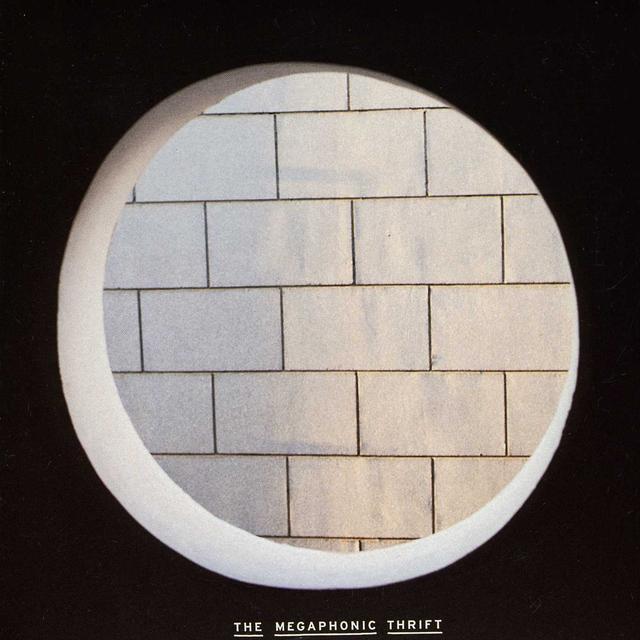 Megaphonic Thrift MOONSTRUCK Vinyl Record