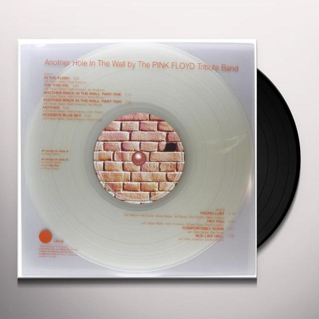 Pink Floyd Tribute Band ANOTHER HOLE IN THE WALL Vinyl Record