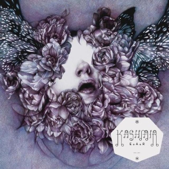 Kashmir E.A.R Vinyl Record - Holland Import