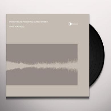 Powerhouse WHAT YOU NEED Vinyl Record - UK Import