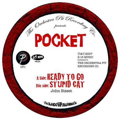 Pocket READY TO GO/STUPID CAT Vinyl Record