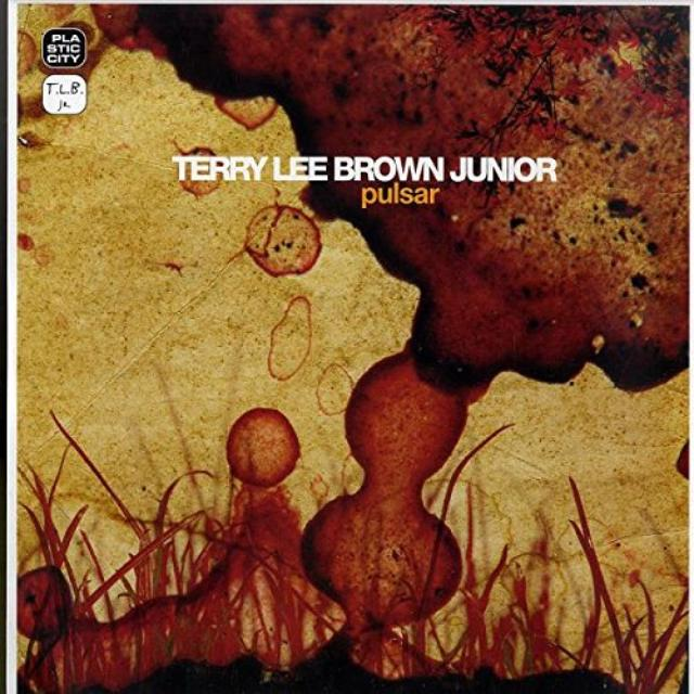 Terry Lee Brown, Jr.