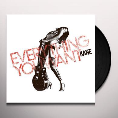 Kane EVERYTHINGYOUWANT Vinyl Record