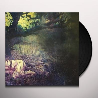 Final APPLE NEVER FALLS FAR Vinyl Record - Holland Import
