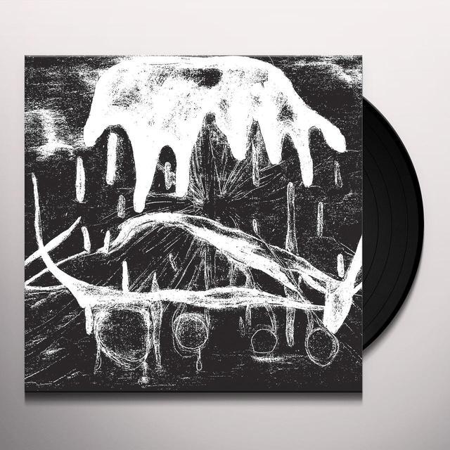 Fis PREPARATIONS Vinyl Record