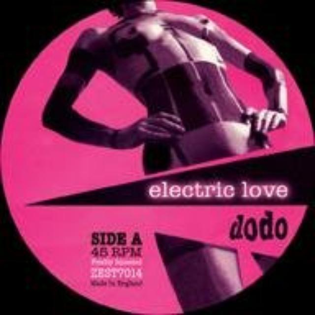 Dodos ELECTRIC LOVE Vinyl Record - UK Release