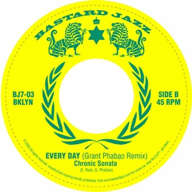 Chronic Sonata EVERYDAY Vinyl Record - UK Release