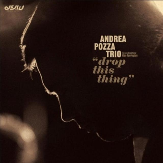 Andrea Pozza Trio
