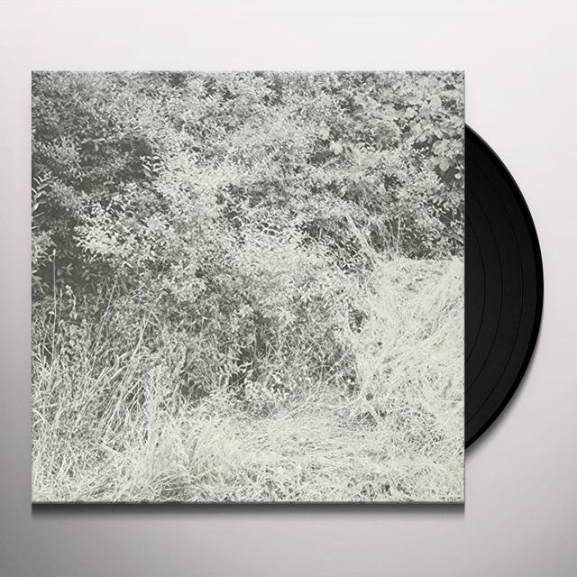 Toni Haupt LIEPEN (EP) Vinyl Record
