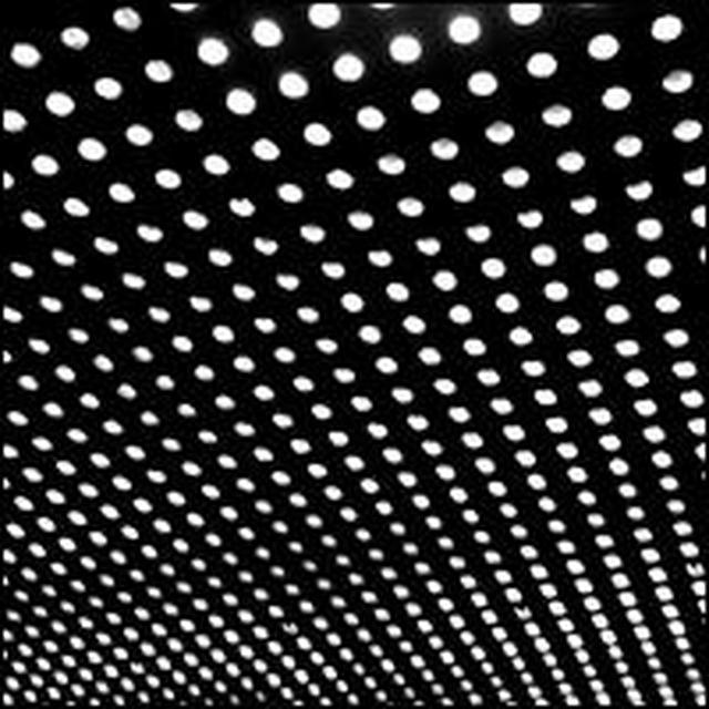 Beach House BLOOM (GER) (Vinyl)