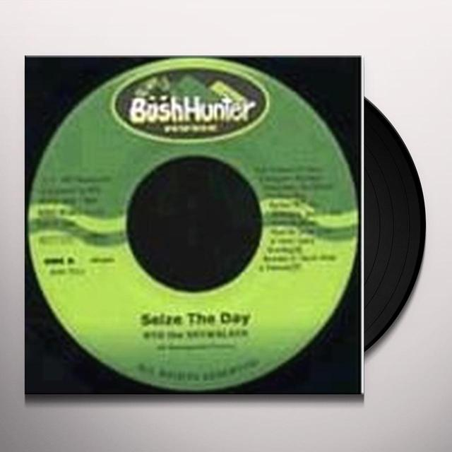 Ryo The Skywalker SOLID GROUND: BINGI 2007 Vinyl Record - Japan Import