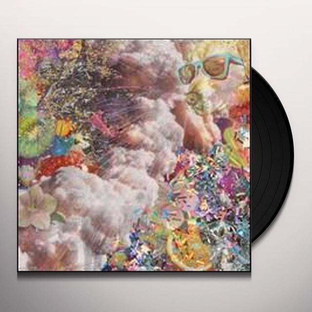 SUNGLASSES Vinyl Record