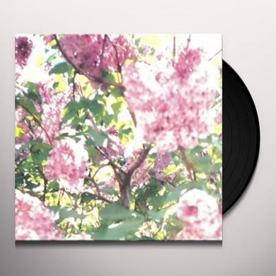 Actual Water PAISLEY ORCHARD Vinyl Record - Canada Import