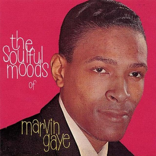 SOULFUL MOODS OF MARVIN GAYE (Vinyl)