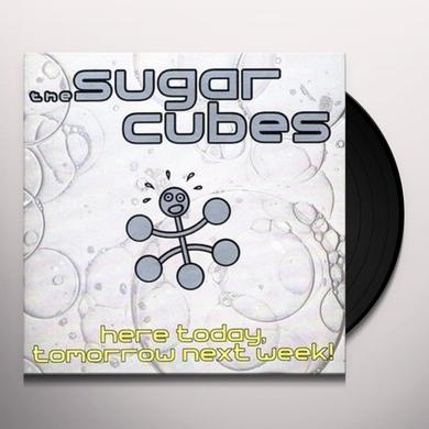 Sugarcubes HERE TODAY TOMORROW: DIRECT METAL MASTER Vinyl Record