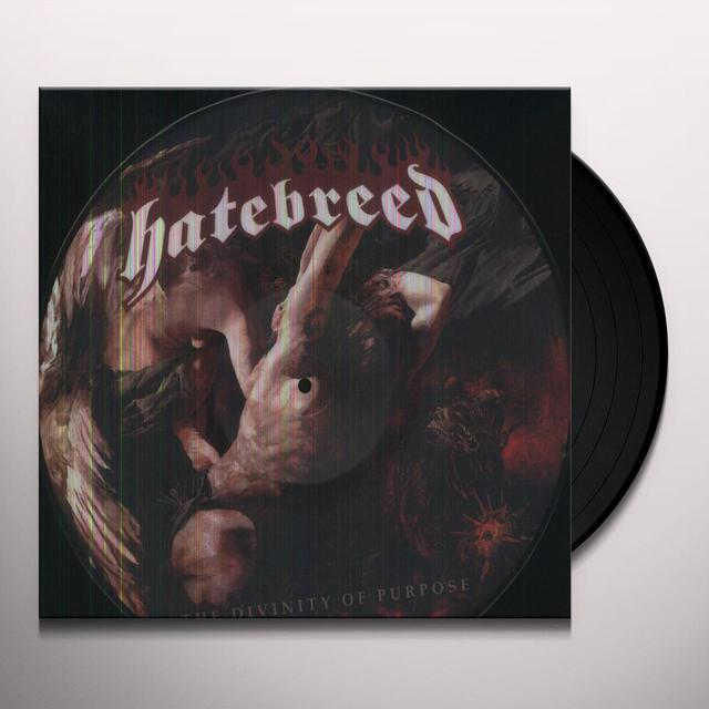 Hatebreed DIVINITY OF PURPOSE Vinyl Record - Picture Disc