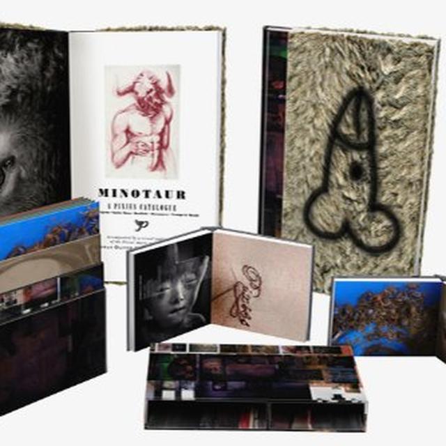 Pixies MINOTAUR Vinyl Record