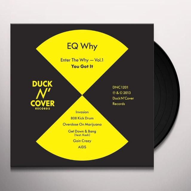 Eq Why ENTER THE WHY VOL. 1: YOU GOT IT Vinyl Record