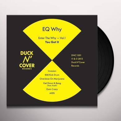 Eq Why ENTER THE WHY VOL. 1: YOU GOT IT Vinyl Record