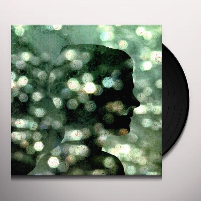 Benoît Pioulard TEMPER Vinyl Record
