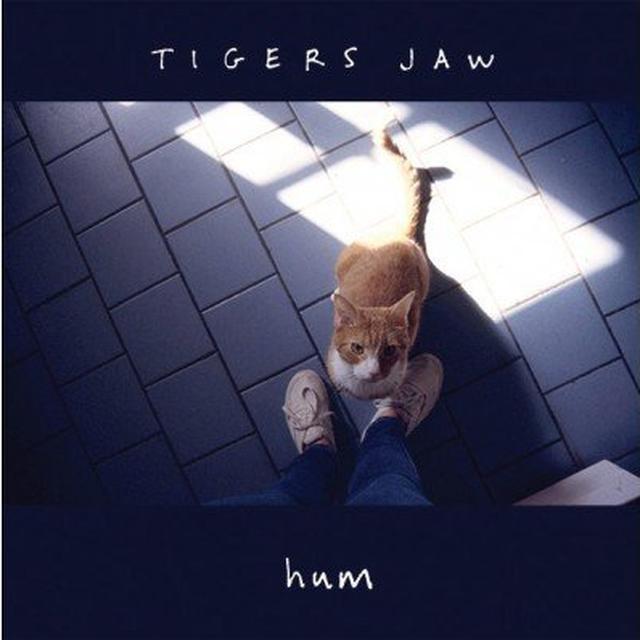 Tigers Jaw HUM Vinyl Record
