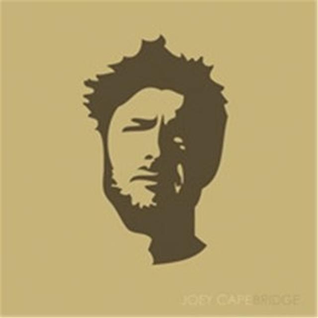 Joey Cape BRIDGE Vinyl Record