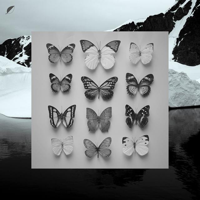 Christian Loffler YOUNG ALASKA (WSV) Vinyl Record