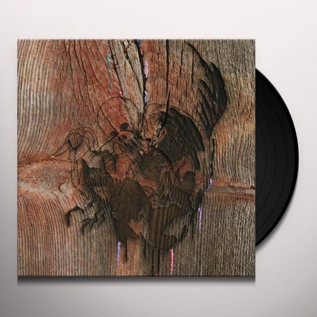 Avey Tare'S Slasher Flicks ENTER THE SLASHER HOUSE Vinyl Record